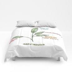 Sage Advice Comforters