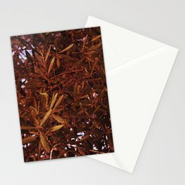 Olive tree in late autumn Stationery Cards
