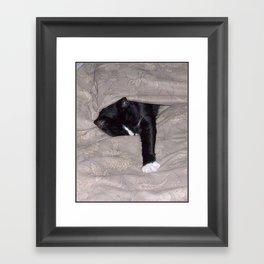 All is Well -or SleepySnoozy Framed Art Print