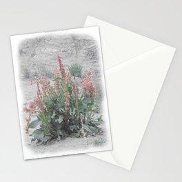 Desert Flora Stationery Cards