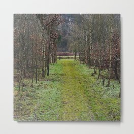 Forest-trail in Harffsen in the Netherlands. Metal Print
