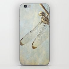 Libellule -- Dragonfly Seems Curious iPhone & iPod Skin