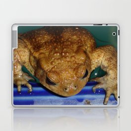Bufo Bufo Clinging To The Edge Of A Swimming Pool Laptop & iPad Skin