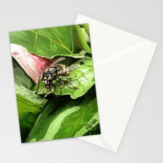 Wasp on flower16 Stationery Cards