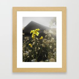 Summer Yield Framed Art Print