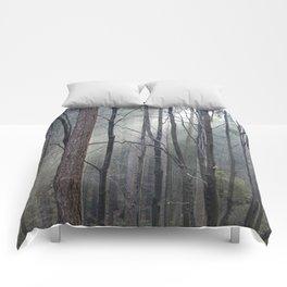 Magical winter light Comforters