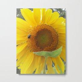 Sun Flower and Friend Metal Print