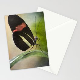 Butterfly Ink. Stationery Cards