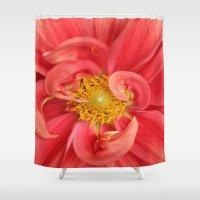 dahlia Shower Curtains featuring Dahlia by KunstFabrik_StaticMovement Manu Jobst