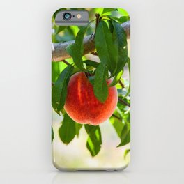 The Peach iPhone Case