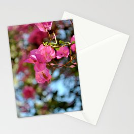 Pink in Nature Stationery Cards