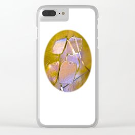 Seeing Rainbows Clear iPhone Case