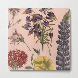 Vintage Floral on Pink Metal Print