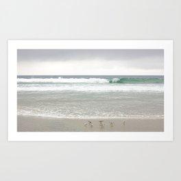 Strands Beach, Dana Point, California Art Print