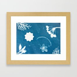 Sunprint - 9 Pointed Stars (2) Framed Art Print