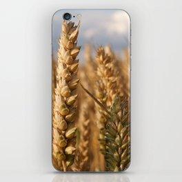Wheat iPhone Skin
