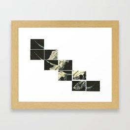 Cow Skull Framed Art Print