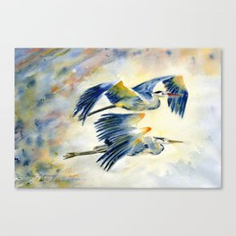 Flying Together - Great Blue Heron Canvas Print