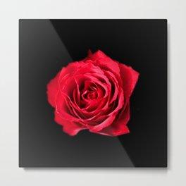 Red rose on black background #society6 #decor #buyart #artprint Metal Print