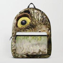 Western Screech Owl Baby Backpack
