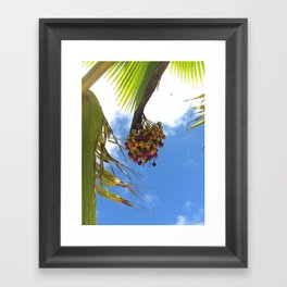 Puerto Rico Condado beach fruit Framed Art Print