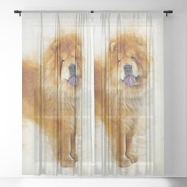Chow Chow Sheer Curtain