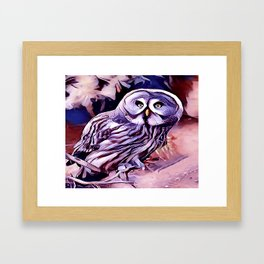 The Great Grey Owl Framed Art Print