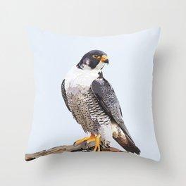 Majestic: Peregrine Falcon Throw Pillow