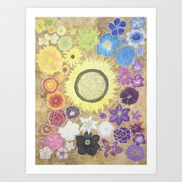 Rainbow of flowers Art Print