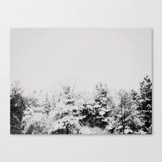 Winter Grey Canvas Print