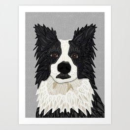Beautiful Border Collie Art Print