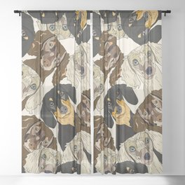 Doxie Nation Sheer Curtain