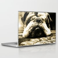 bulldog Laptop & iPad Skins featuring Bulldog by Urlaub Photography