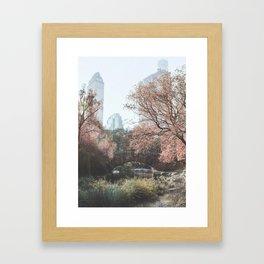 Central Park Framed Art Print