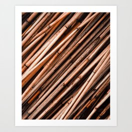 Bamboo Cluster Art Print