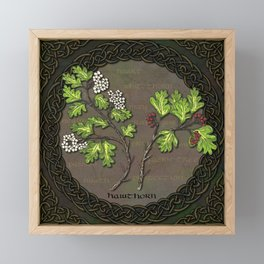 Celtic Hawthorn Framed Mini Art Print