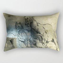On the fields Rectangular Pillow