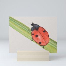 Ladybird on a blade of grass Mini Art Print