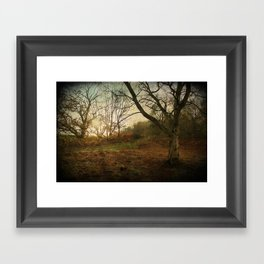 Autumn Afternoon  Framed Art Print