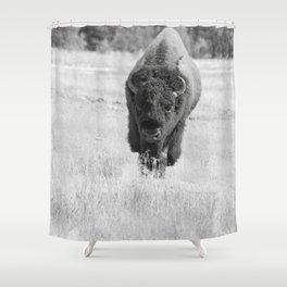 Buffalo walking toward you Shower Curtain