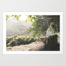 Olive Afternoon Art Print