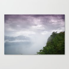 forest view. Canvas Print