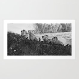 Fox Kits Sketch Art Print