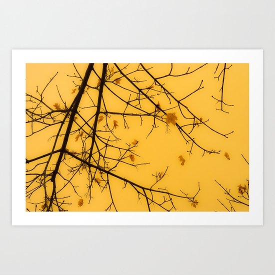 November Leaves Art Print
