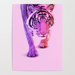 COLOR TIGER Poster