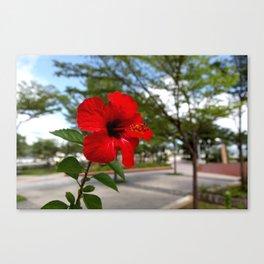 Red Flower Bloom Canvas Print
