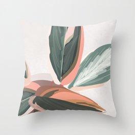 Stromanthe Sanguinea Throw Pillow