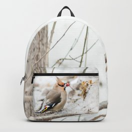 Bohemian waxwing Backpack