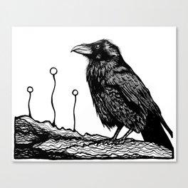 Jovial Raven Canvas Print
