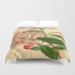 Botanical Illustration No.4893 Duvet Cover